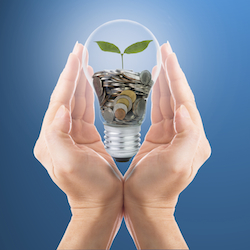 Hand cover growing money coins with bulb idea for investment in the future.